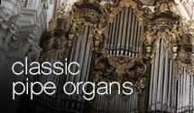 Rotate_Organ